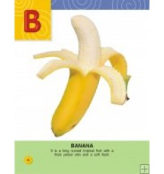 My New Book Of ABC Series: Fruit ABC