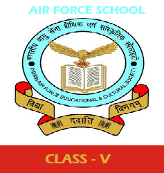 Air Force School Class 5