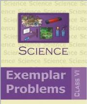 NCERT Exemplar Problems Science for Class 6