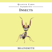 Brainsmith Insects