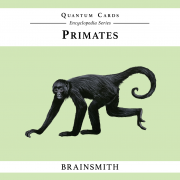 Brainsmith Primates